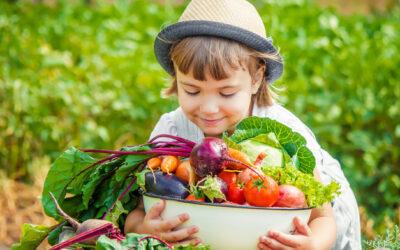 2021: Ano Internacional das Frutas e Hortícolas